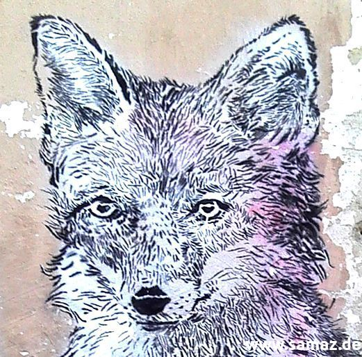 no_more_lies_fox_stencil_details